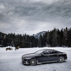 Audi A8 vs. AEZ Steam graphite