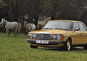 Mercedes W123: így ünnepelheted a 40 éves jubileumot