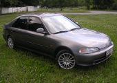 Honda Civic - NightWolf